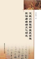汉魏六朝琅琊王氏家族政治与婚姻文化研究