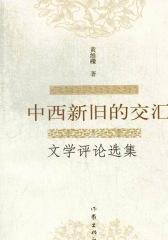中西新旧的交汇:文学评论选集