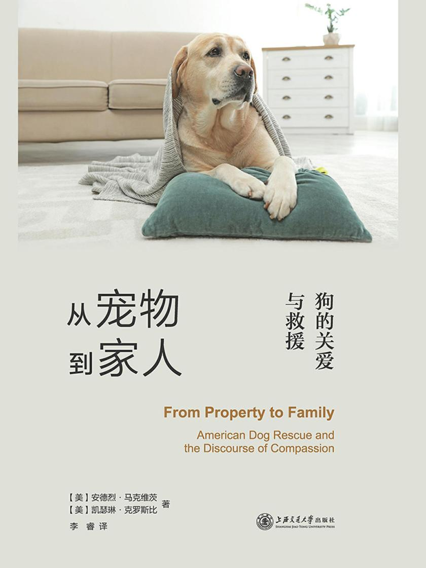 从宠物到家人:狗的关爱与救援
