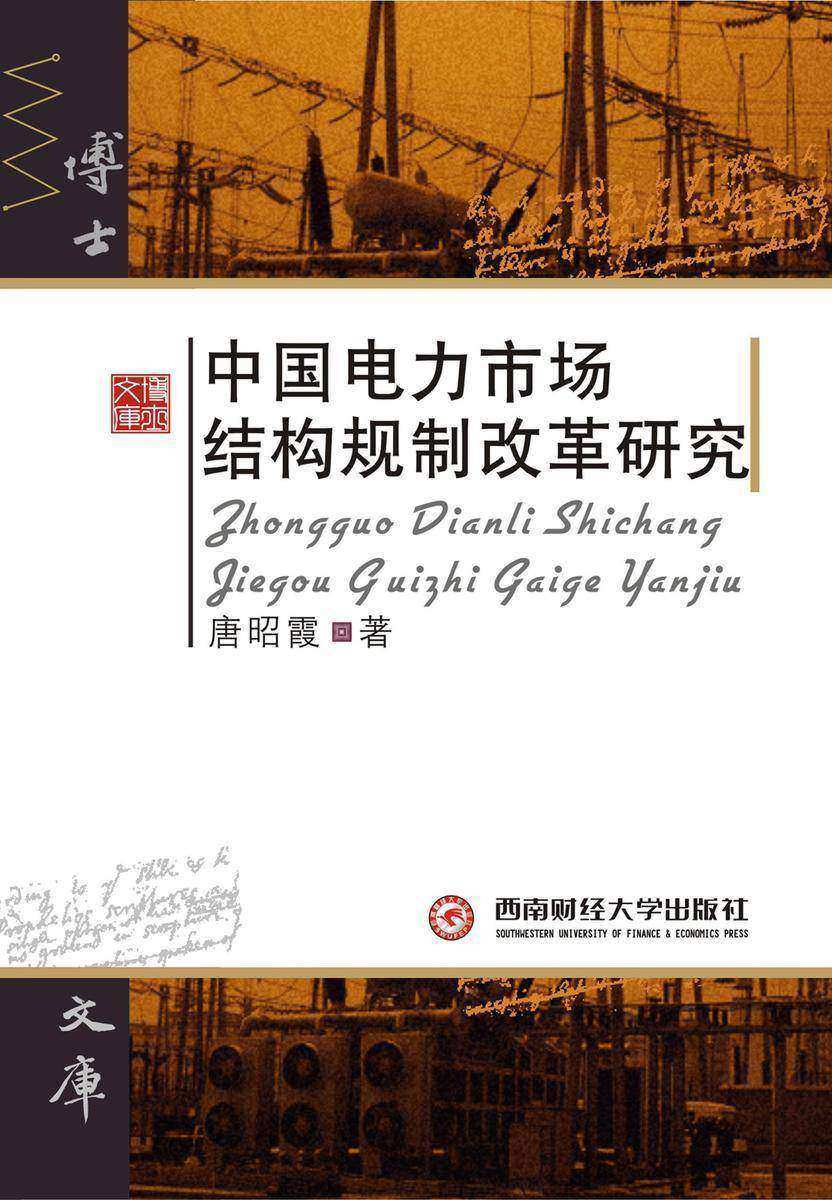 中国电力市场结构规制改革研究