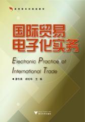 国际贸易电子化实务