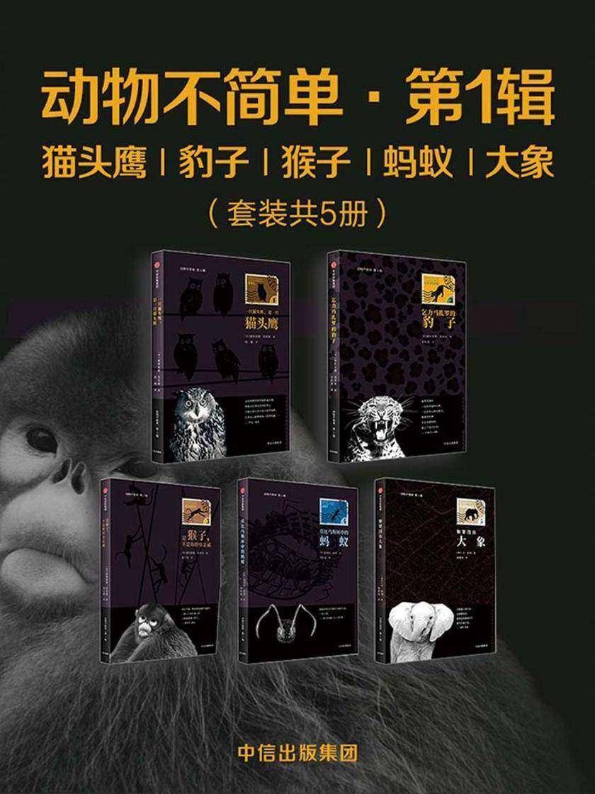 动物不简单·第1辑:猫头鹰、豹子、猴子、蚂蚁、大象