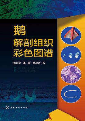 鹅解剖组织彩色图谱