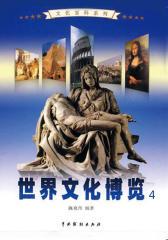 世界文化博览4