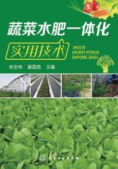 蔬菜水肥一体化实用技术