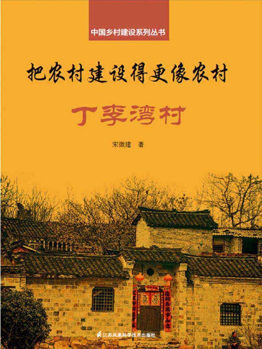 把农村建设得更像农村·丁李湾村(中国乡村建设系列丛书)