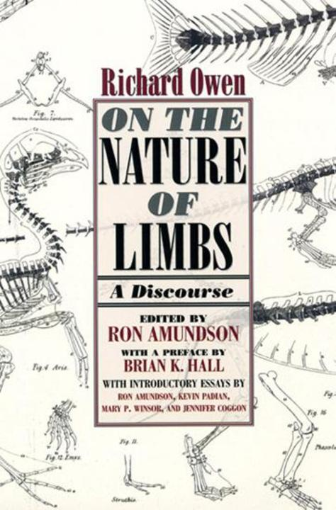 On the Nature of Limbs