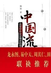 中国流(试读本)