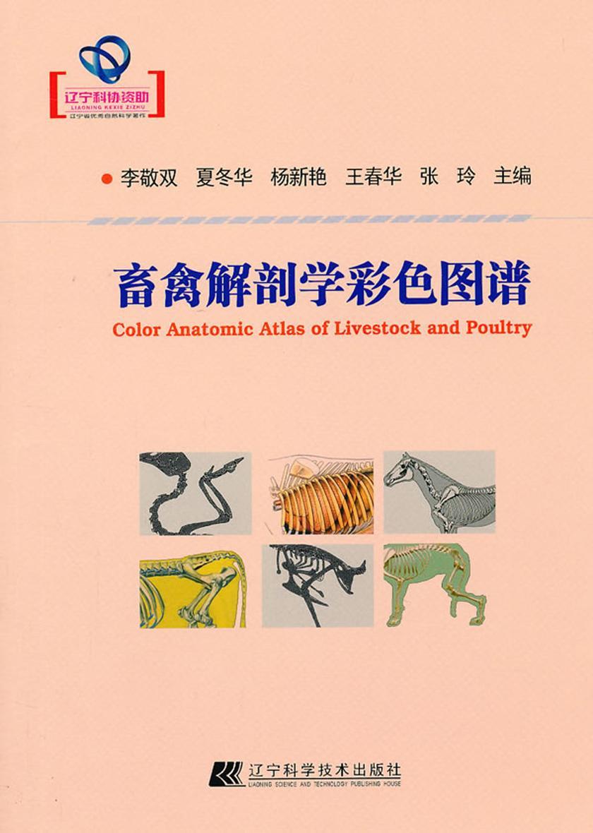 畜禽解剖学彩色图谱