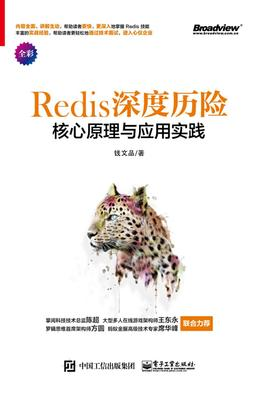 Redis 深度历险:核心原理与应用实践(试读本)