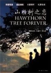 山楂树之恋(影视)