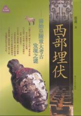 西部埋伏:秦始皇陵重大考古发现之谜