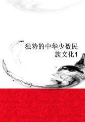 独特的中华少数民族文化1