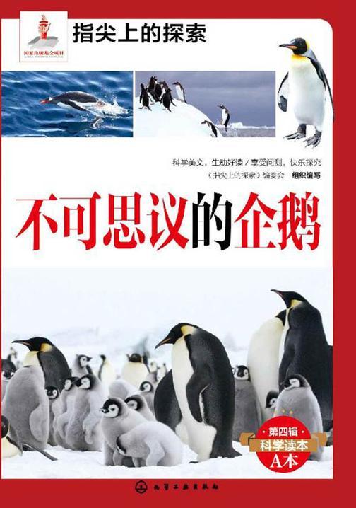 不可思议的企鹅