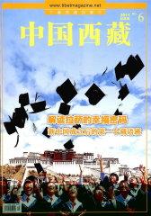 中国西藏 双月刊 2011年06期(电子杂志)(仅适用PC阅读)