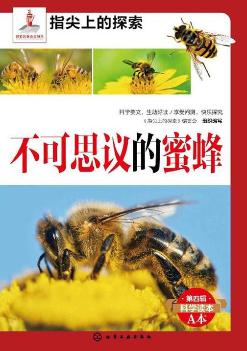 不可思议的蜜蜂