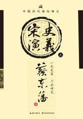 中国历代通俗演义:宋史演义(上)