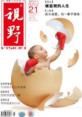视野 月刊 2011年21期(电子杂志)(仅适用PC阅读)