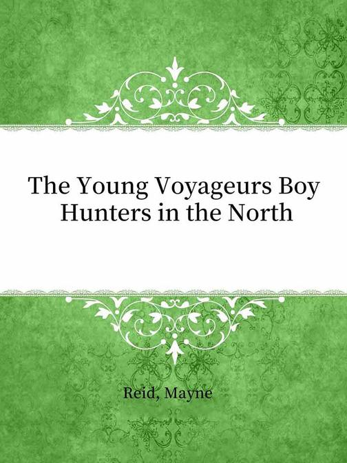 The Young Voyageurs Boy Hunters in the North