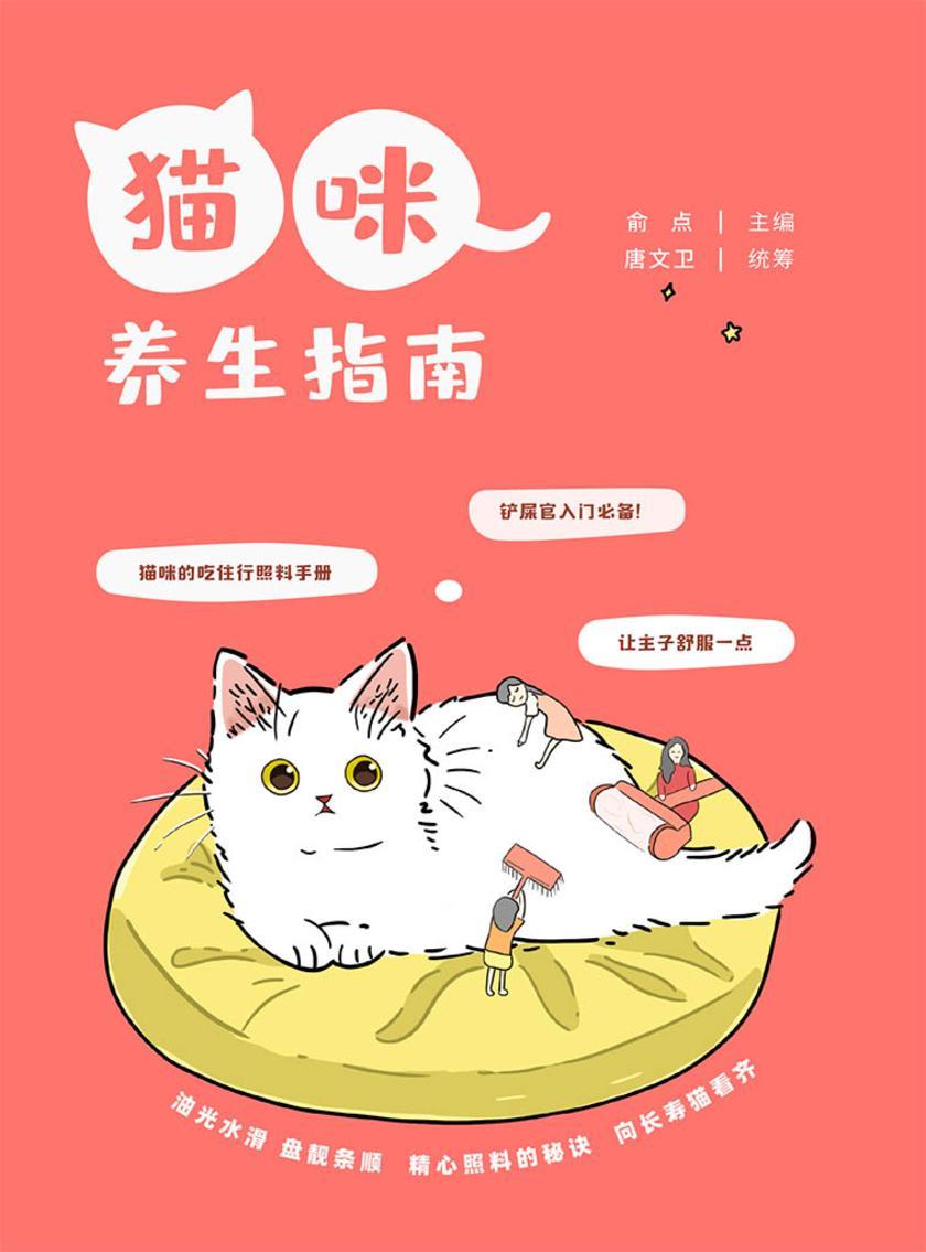猫咪养生指南
