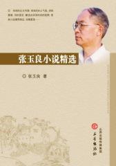 张玉良小说精选(上、下)