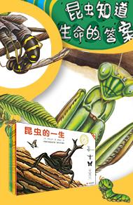 昆虫的一生